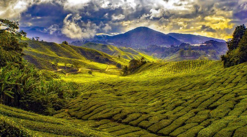 malaysia, tropics, mountains